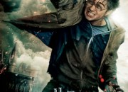 Harry-Potter-Banner-550x813